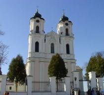 Seinų katedra